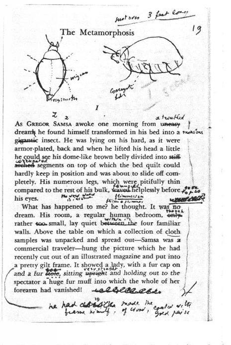 """Franz Kafkas Erzählung """"Die Verwandlung"""", redigiert von Vladimir Nabokov"""
